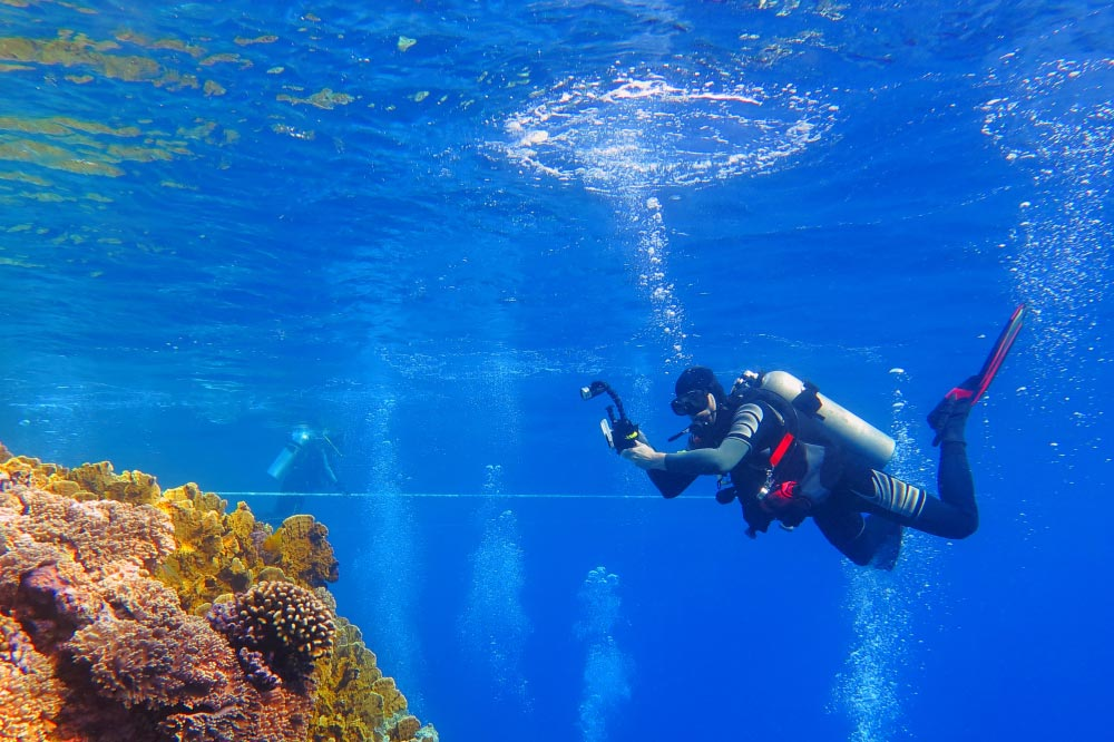 Day 5: Enjoy A Diving Excursion in Hurghada